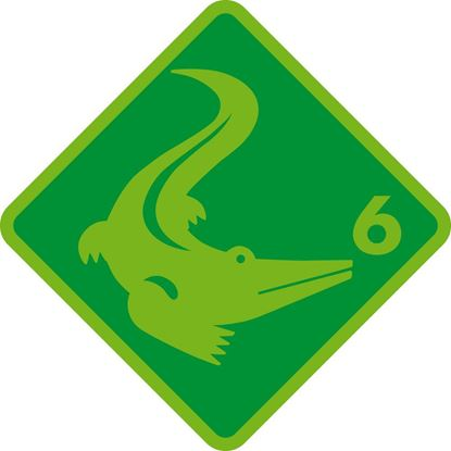 Bild von Kinderschwimmen Krokodil