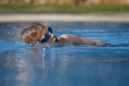 Bild von Kinderschwimmen Sport 1