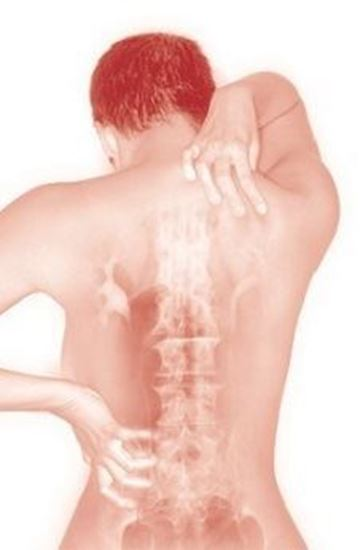 Bild von Massagegutschein Breuss Massage 45 min